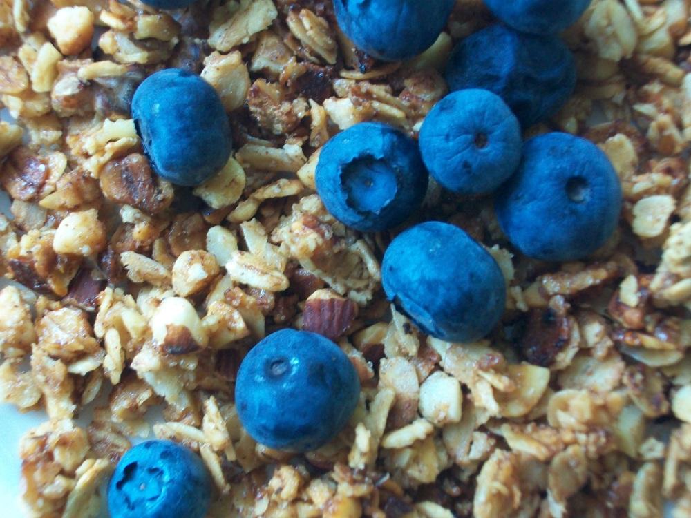 Granola with fresh blueberries