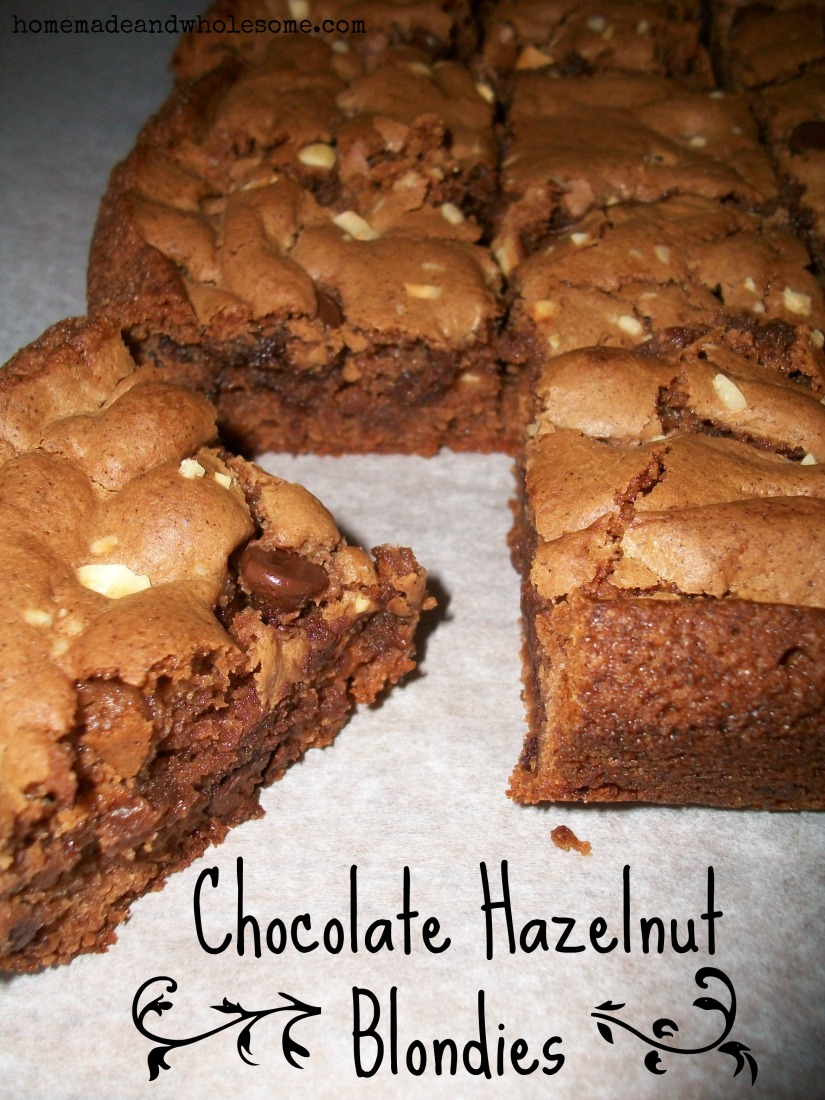 chocolate hazelnut blondies