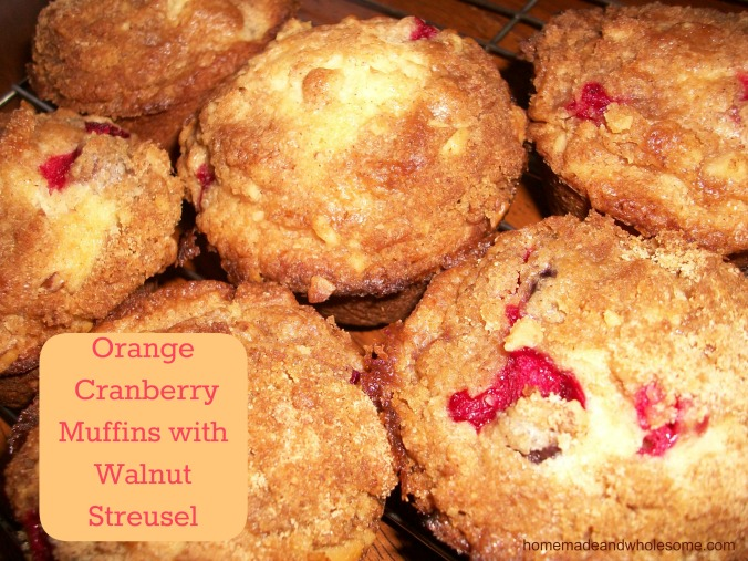 Orange Cranberry Muffins with Walnut Streusel topping   Homemade and ...